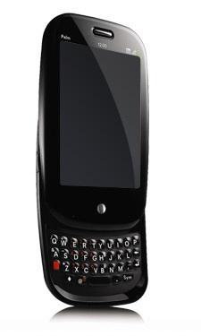 bell-palm-pre