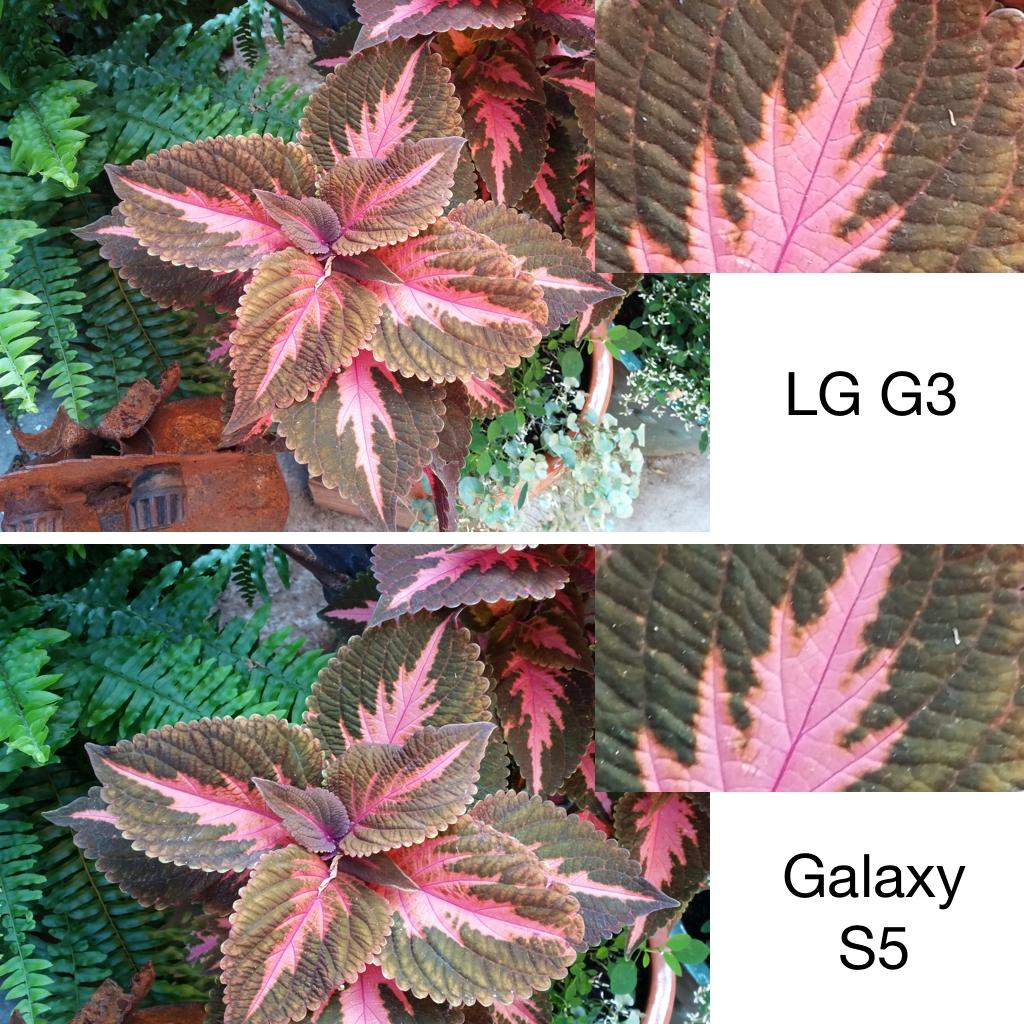 lgg3cameracomparison-1