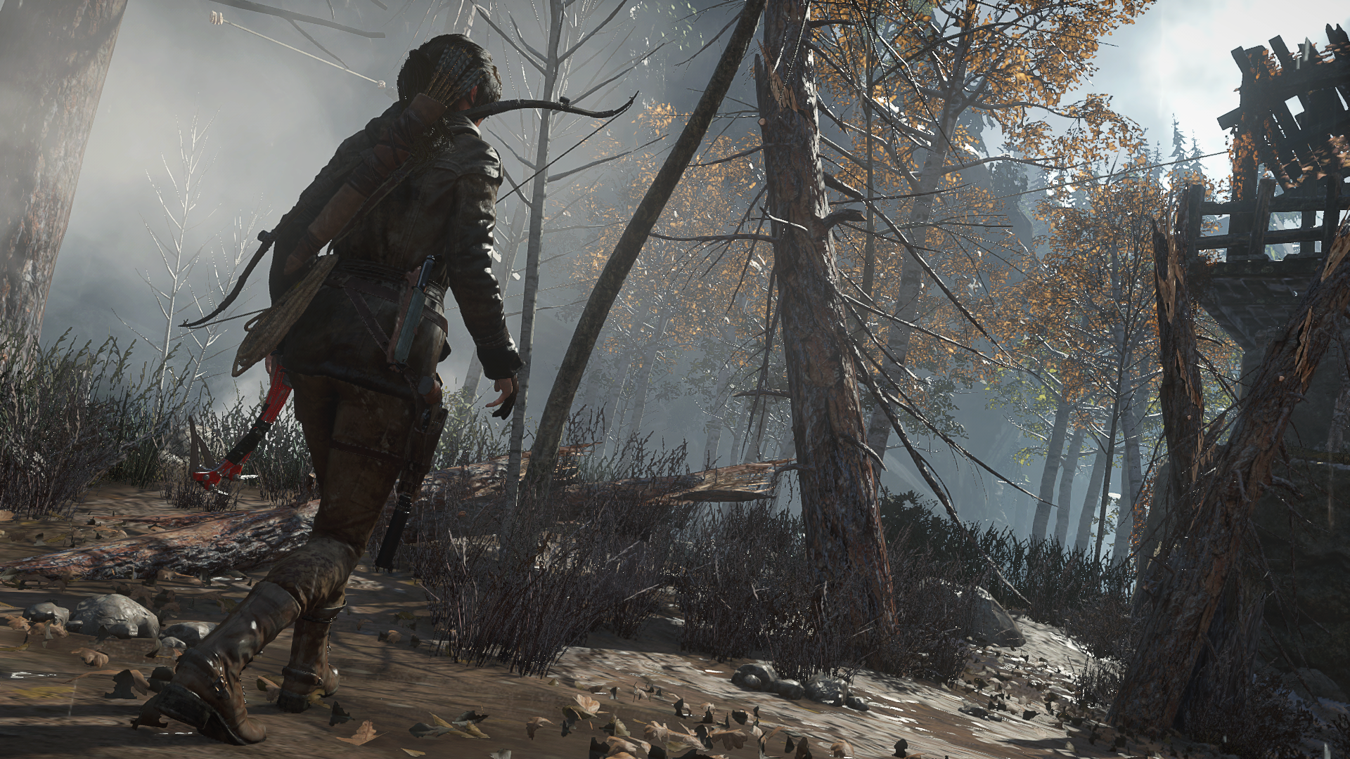 ROTTR-Lara-in-the-Forest