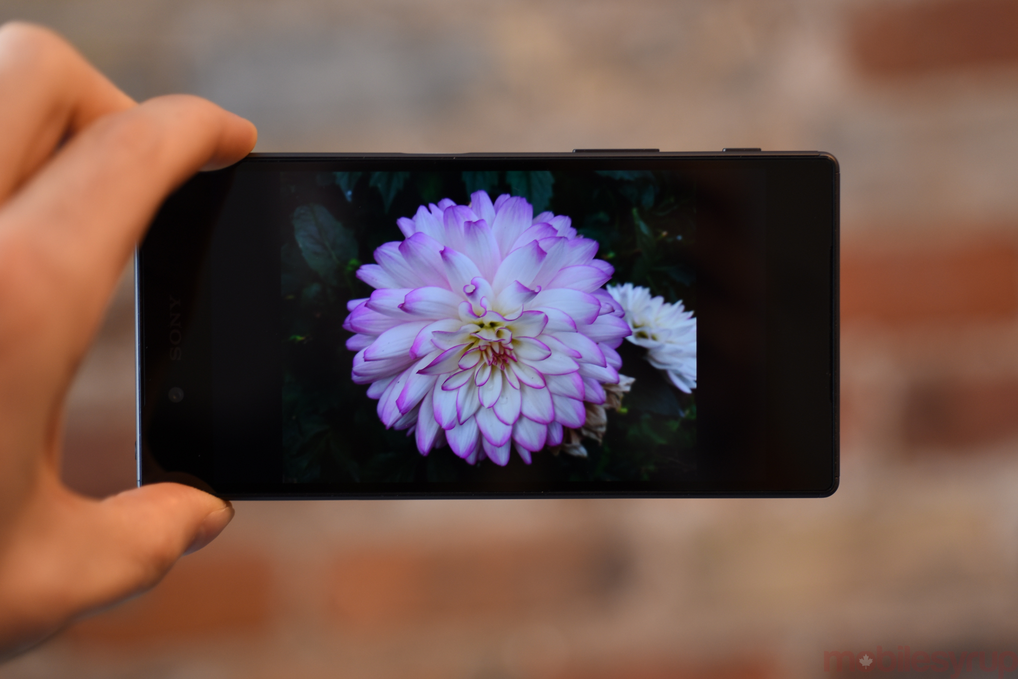 sonyxperiaz5review-0658