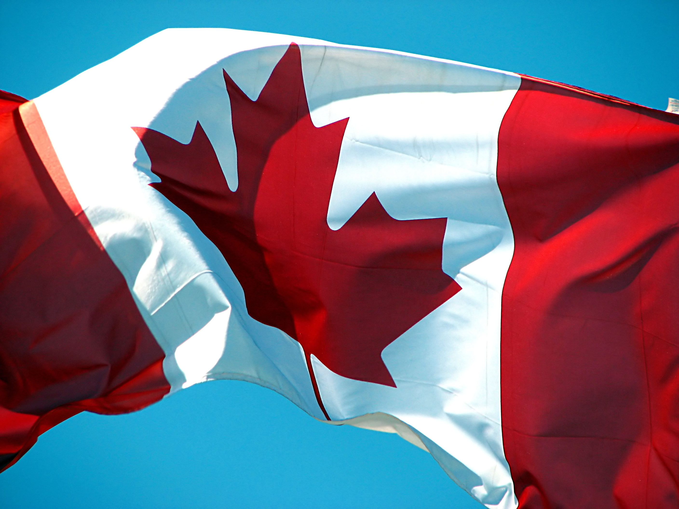 8 awesome Canadian-made mobile apps