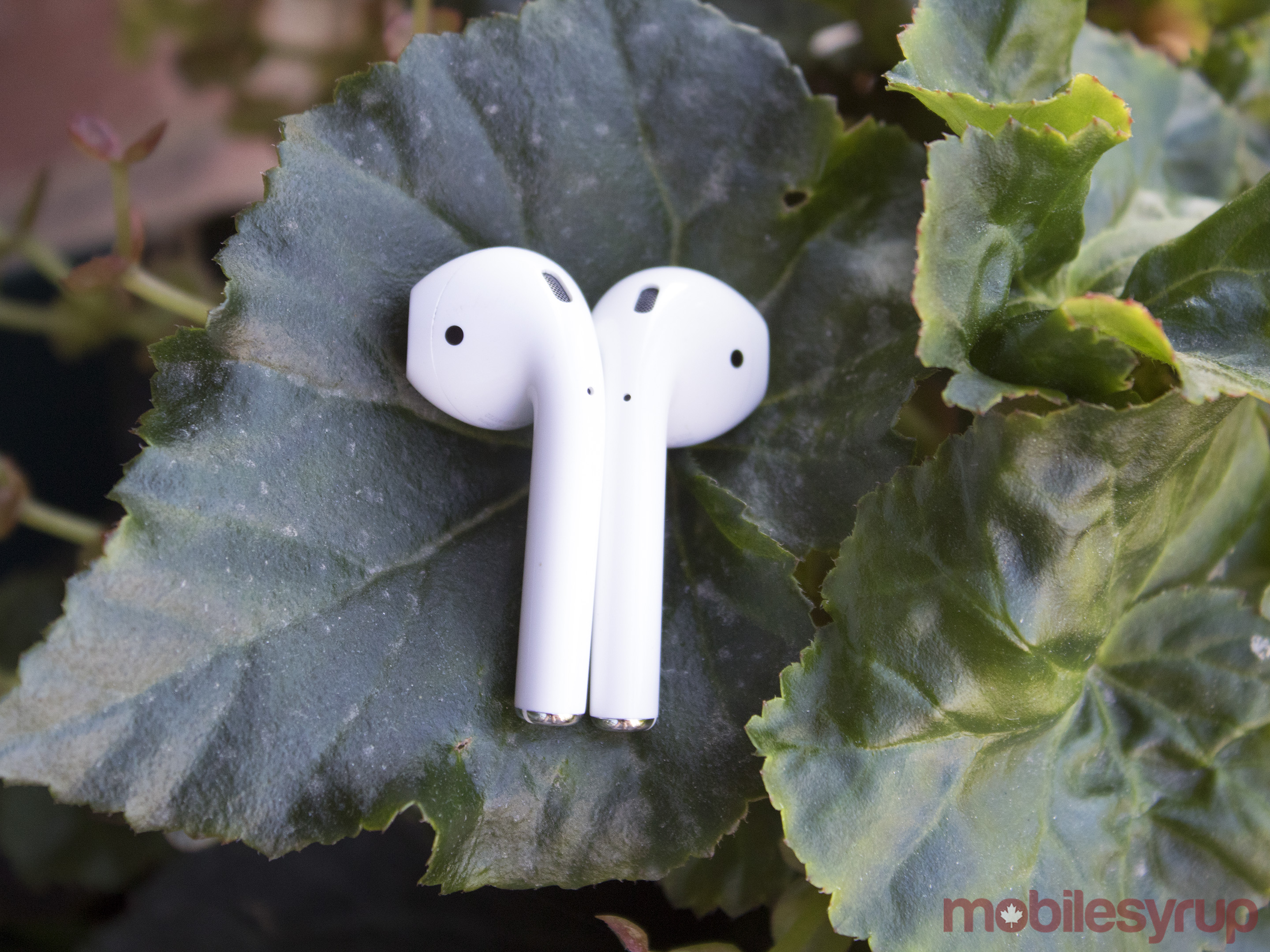 airpods-55