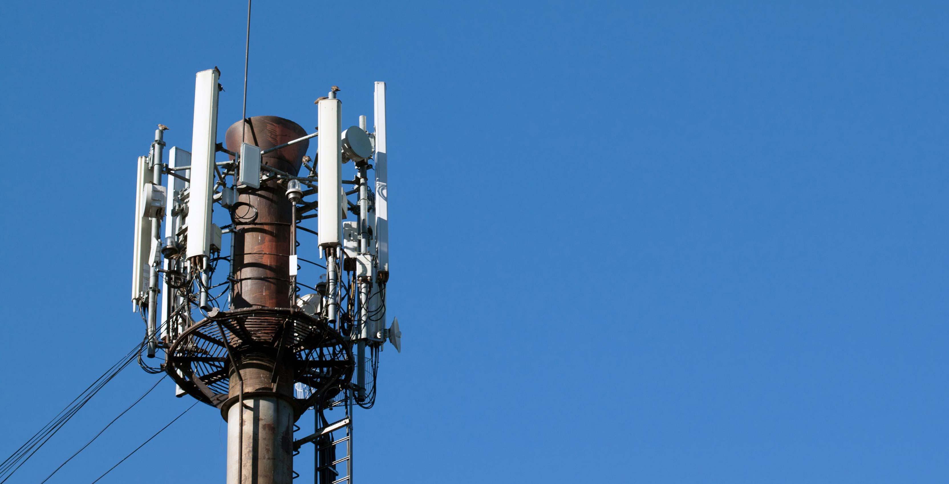 SaskTel turns on 62 new LTE towers in Saskatchewan | MobileSyrup