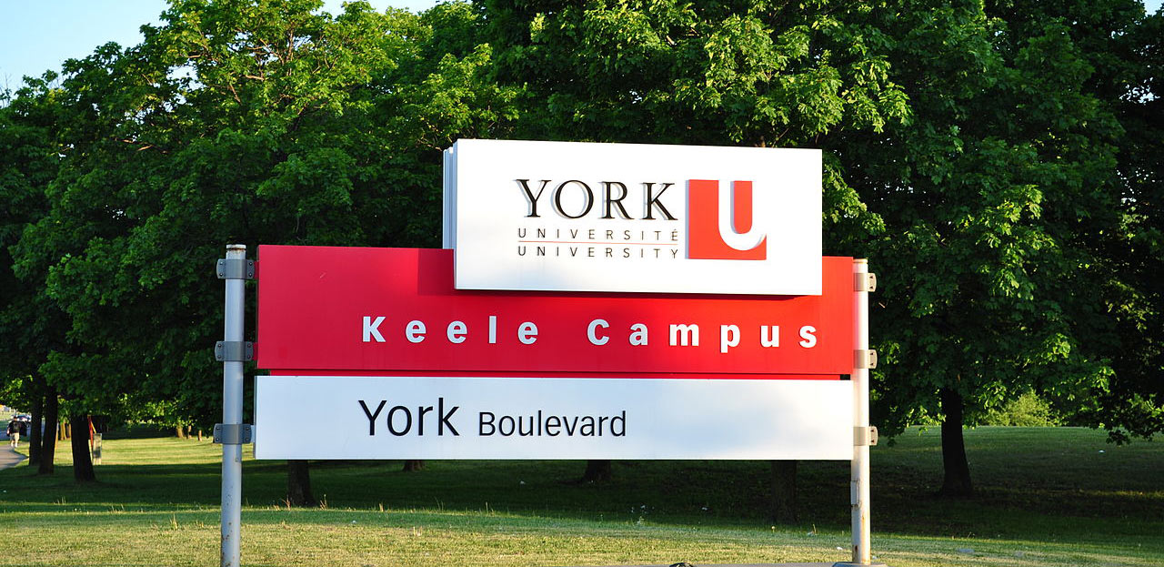 York University - data science