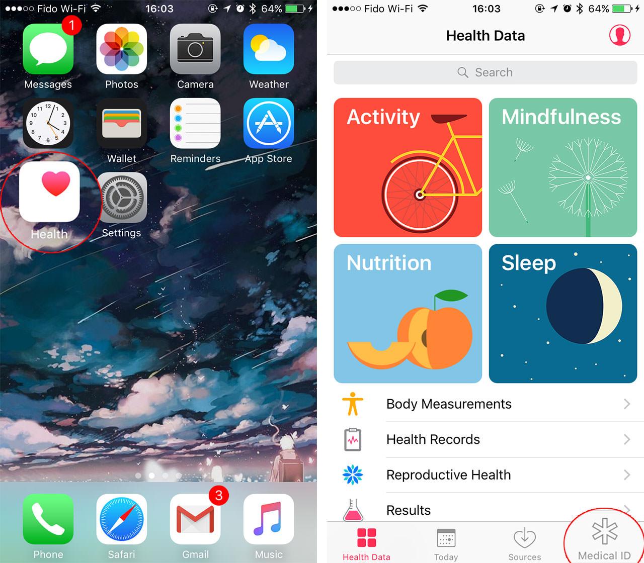 Health app on iOS