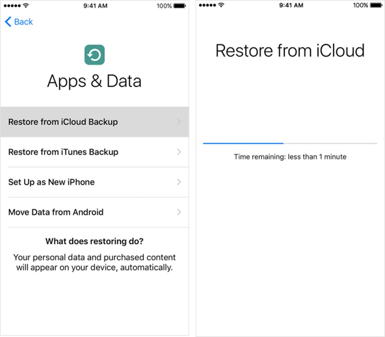 iCloud Restore Screenshots