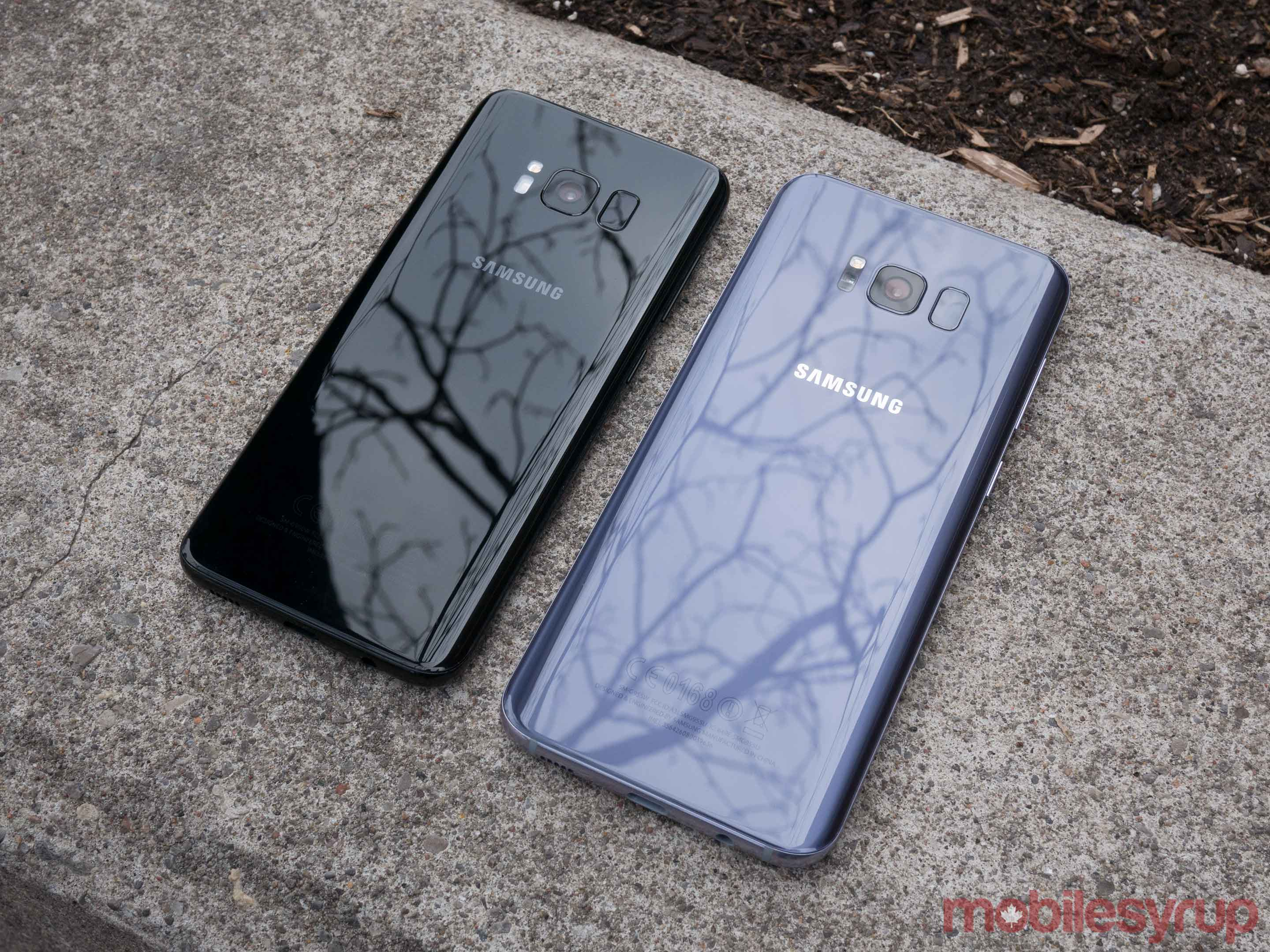 Galaxy S8 and S8+ on street curb