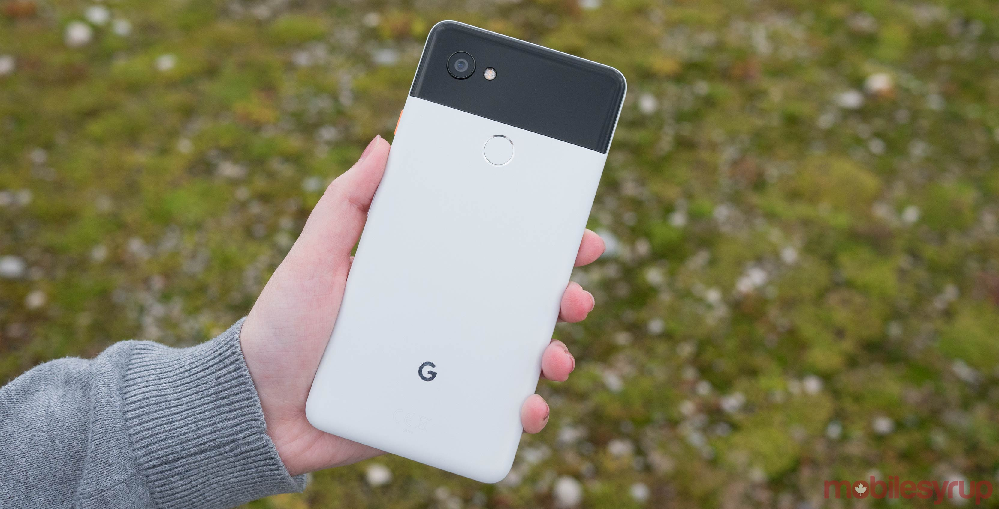 Google Pixel rear in hand