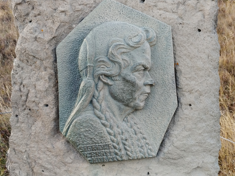LG V30 plaque