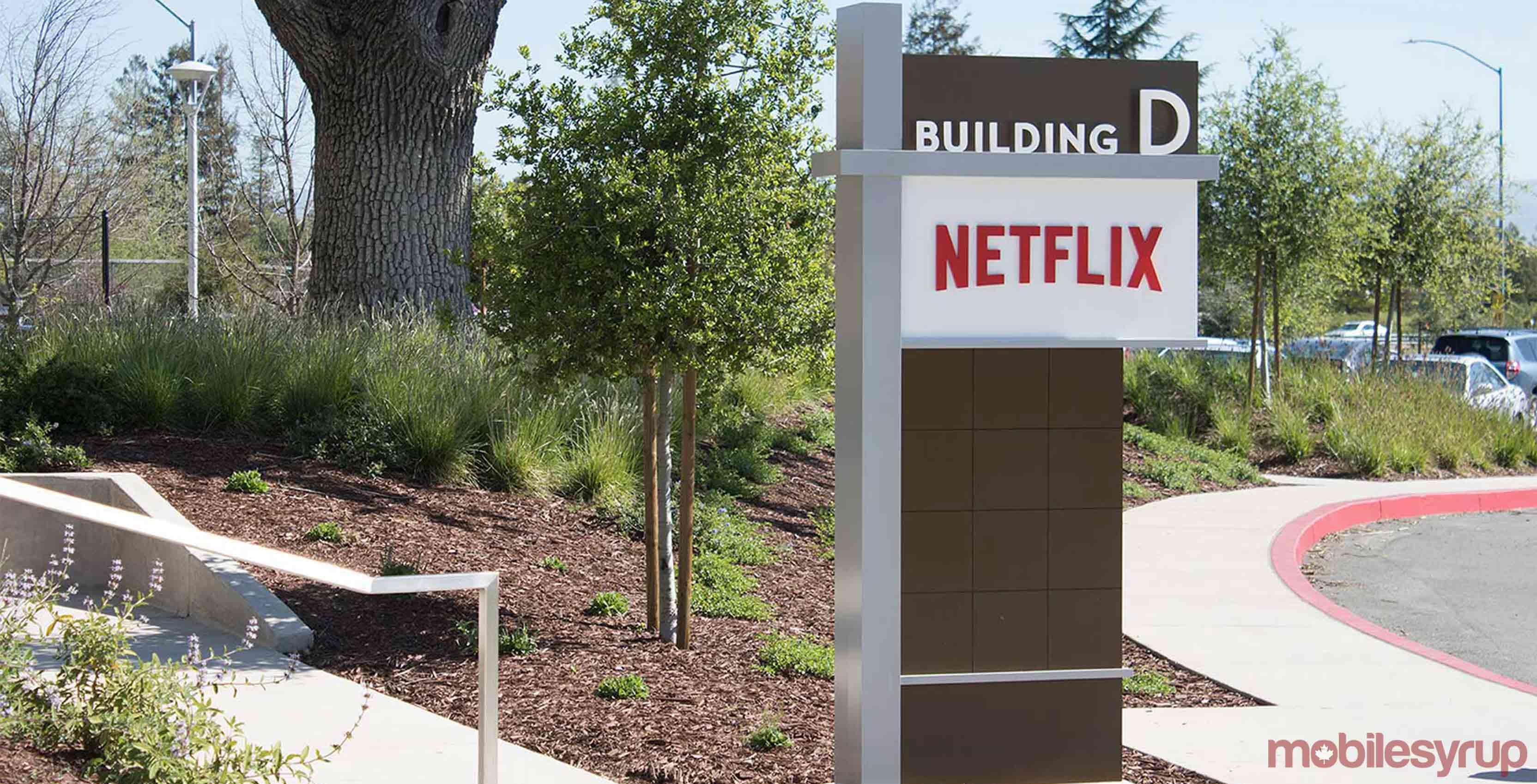 Revenue Estimates Analysis Netflix, Inc. (NFLX)