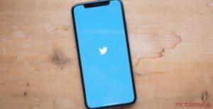 Twitter app on iPhone X