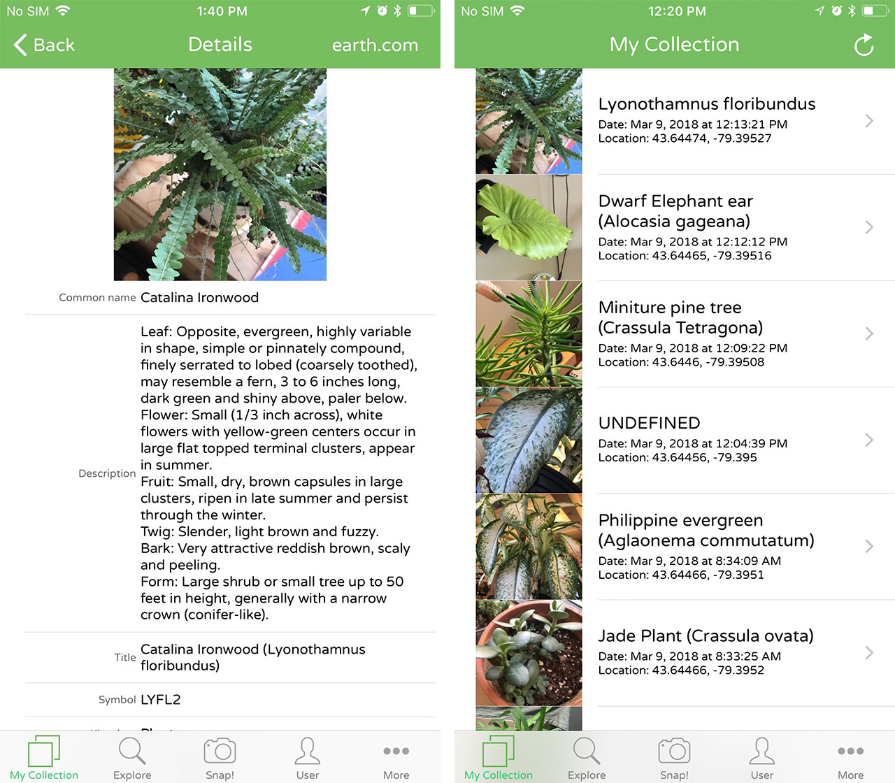 Identify plants with an artificial intelligence app [App of