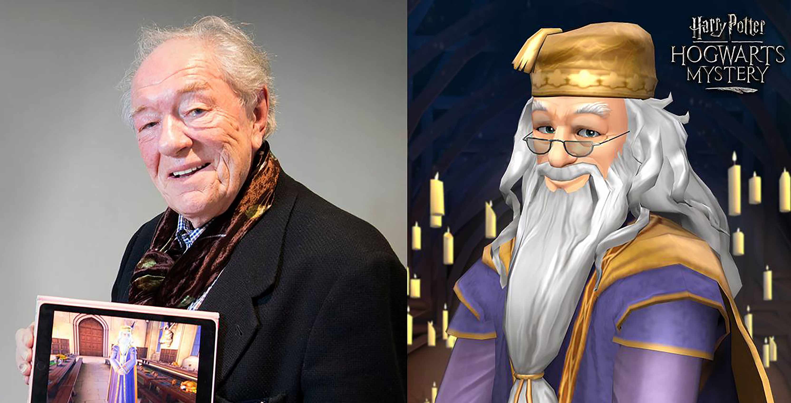 Harry Potter Hogwarts Mystery Michael Gambon