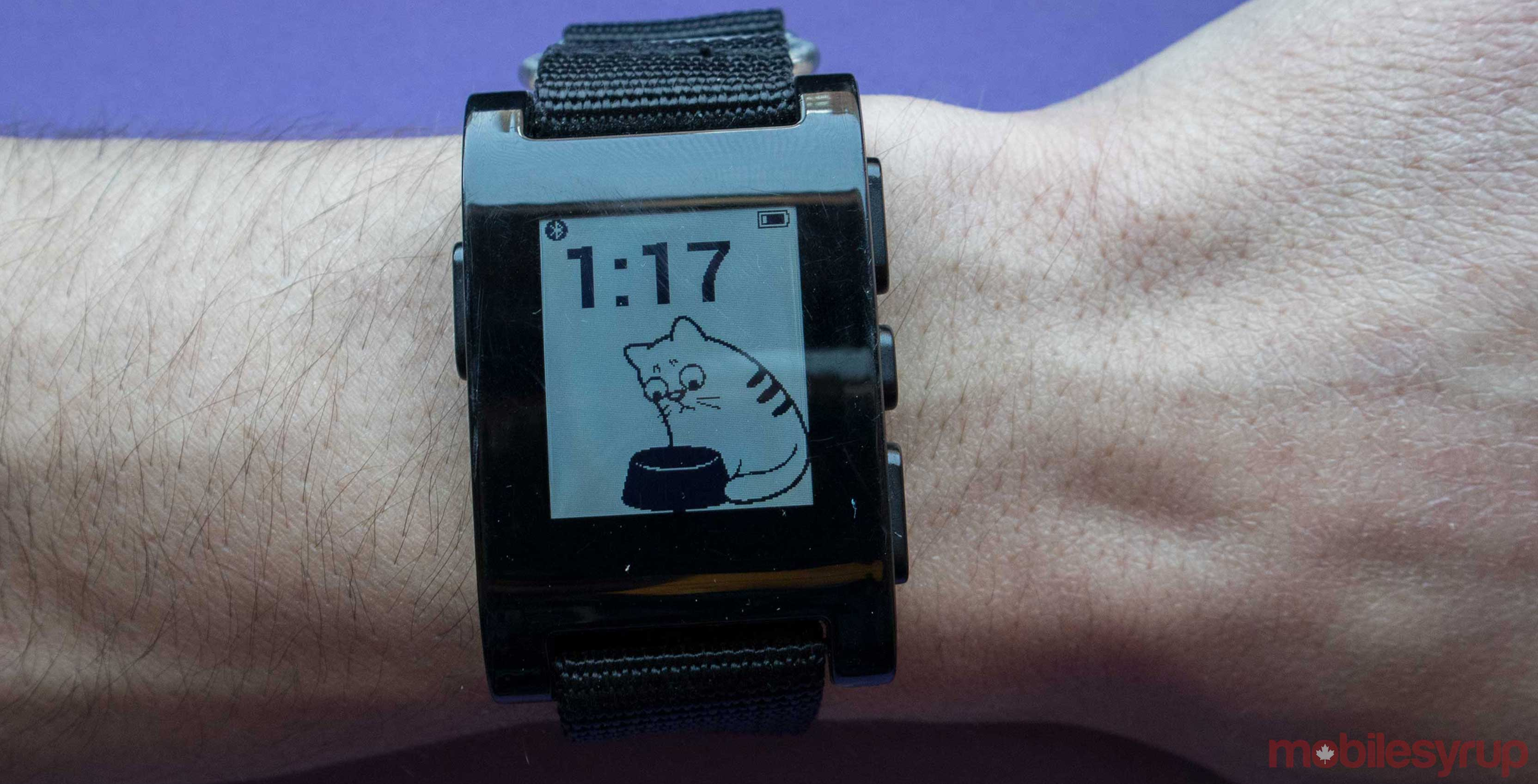 A group of Pebble users are trying to keep the platform alive