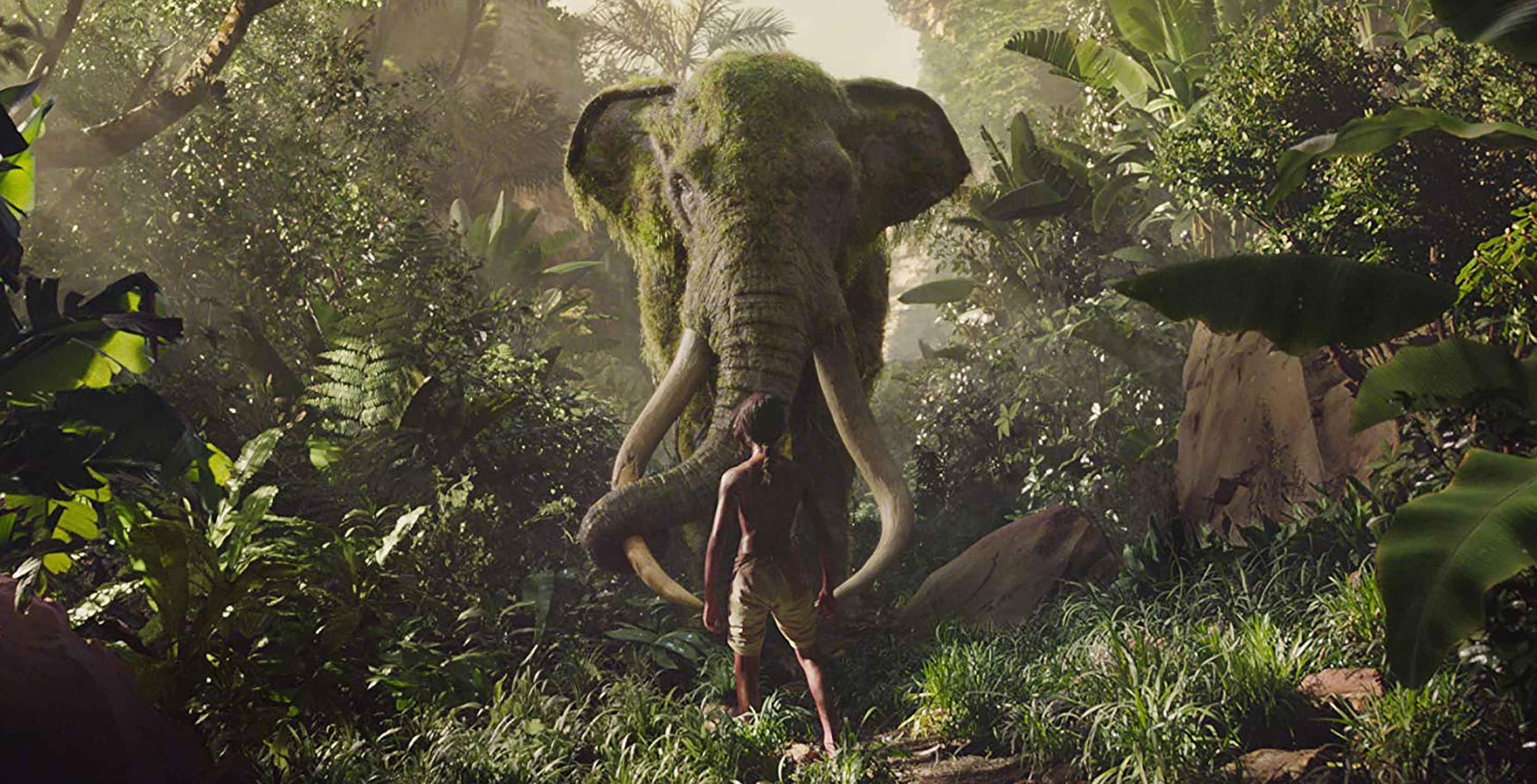 jungle 2019 netflix