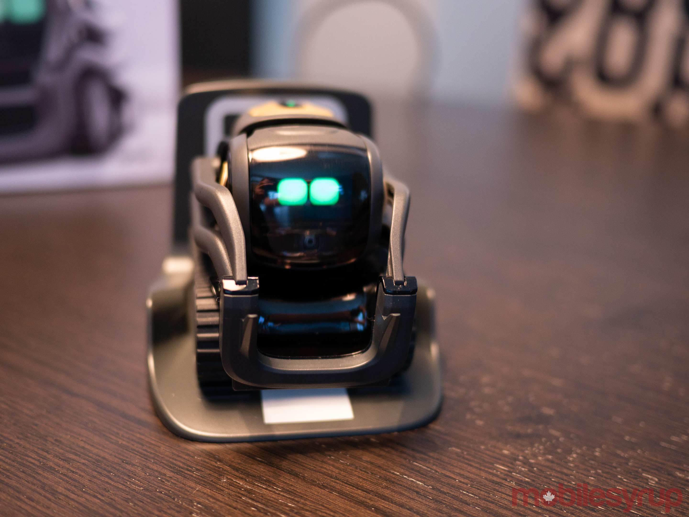 ankis new vector robot just wants to hang out with you