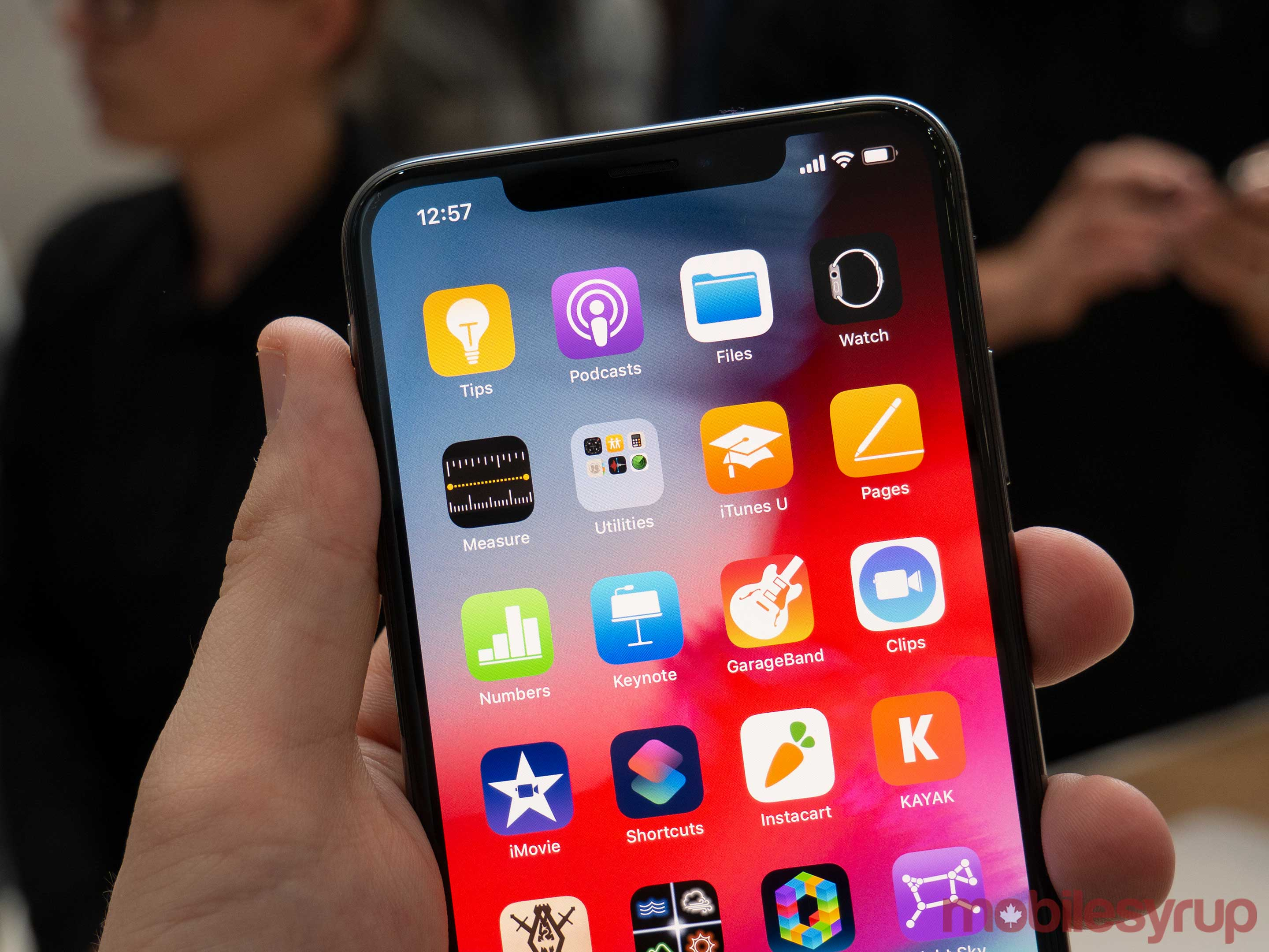iPhone XS Notch