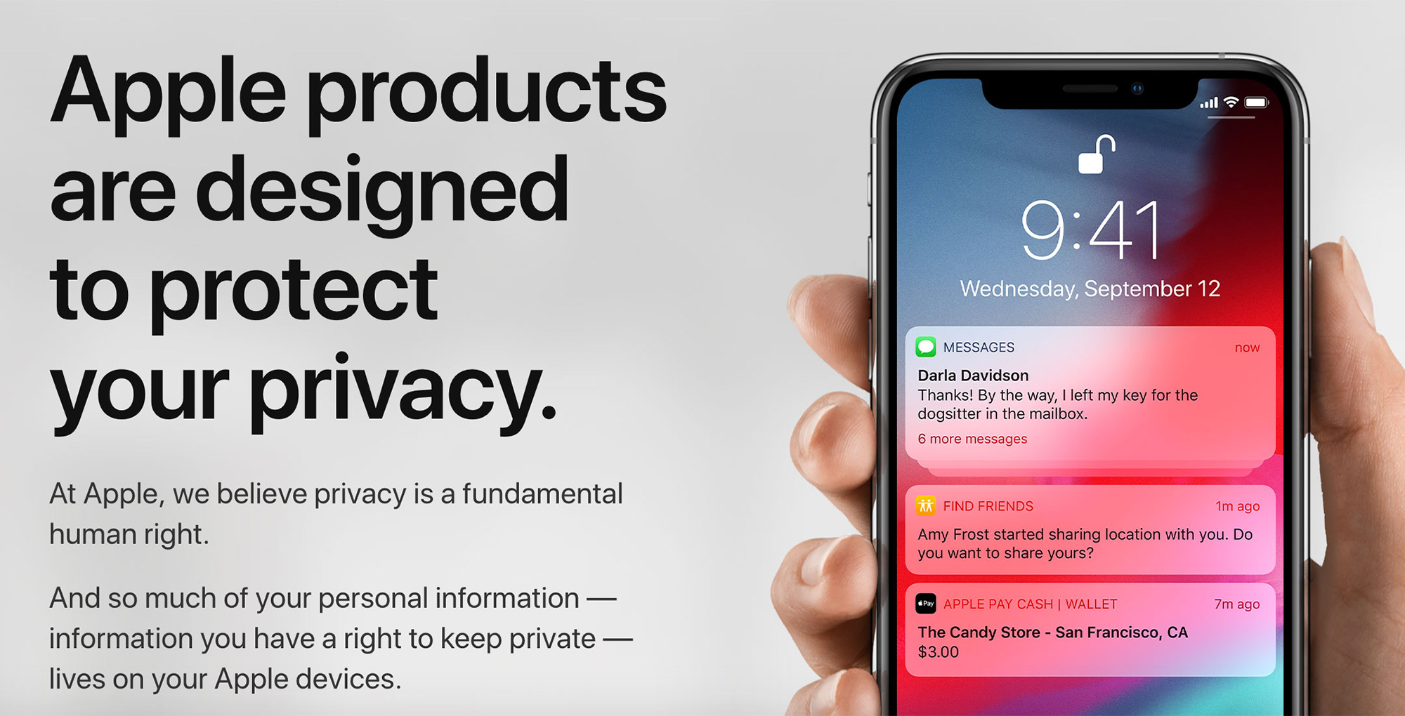 Apple privacy