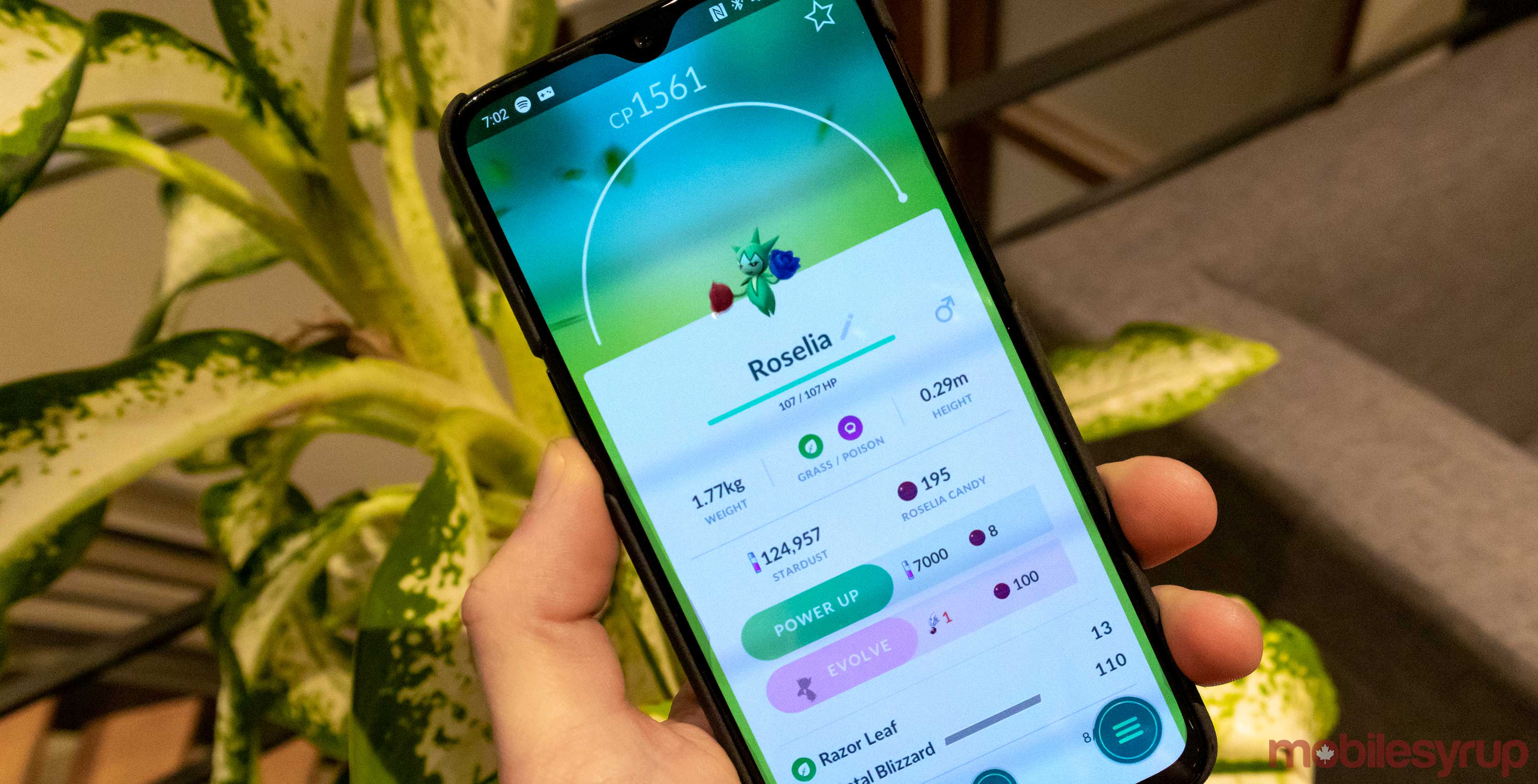 Niantic confirms Jirachi and Unova region pocket monsters in Pokémon Go