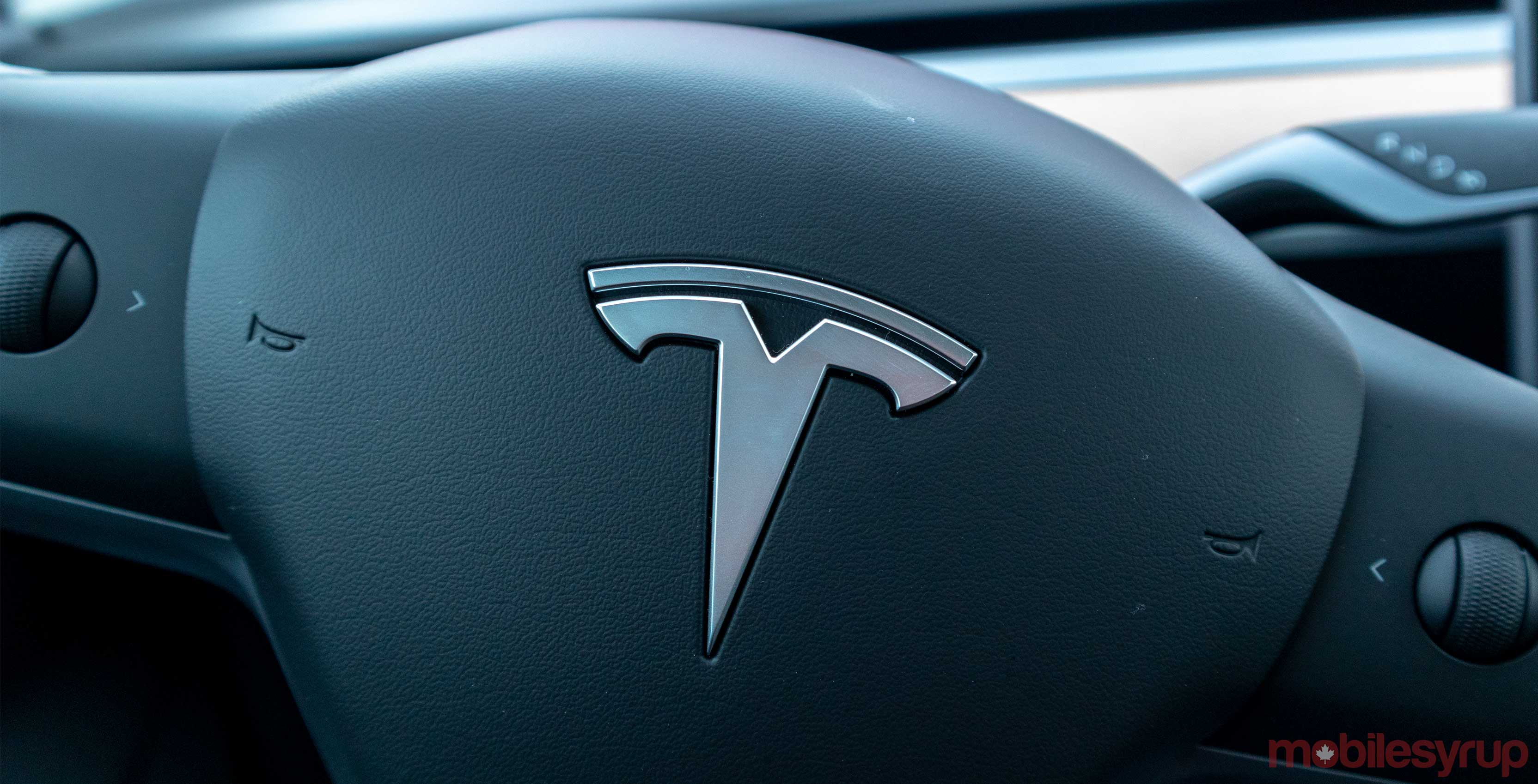Tesla demonstrated the regime for dogs in cars