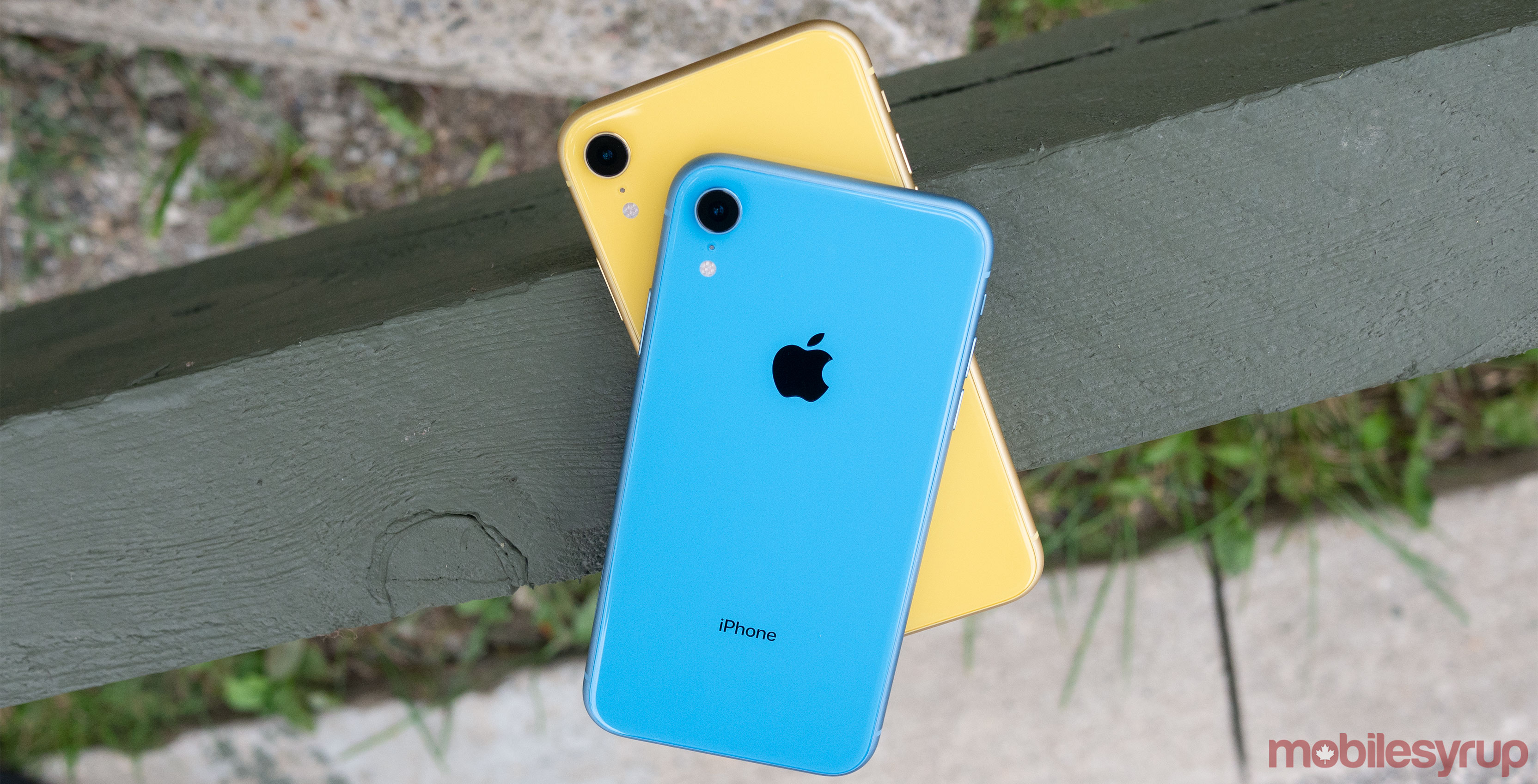 iPhone XR Blue and Yellow