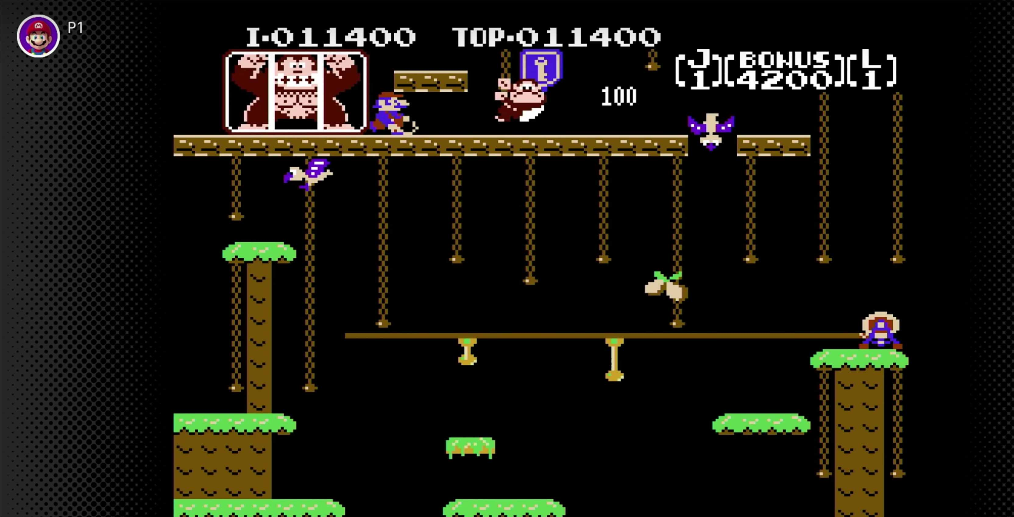 Donkey Kong Jr. gameplay