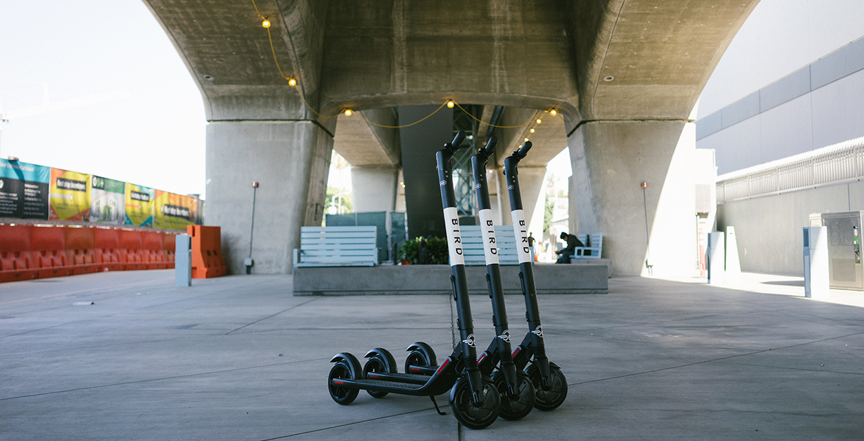 Bird rental e-scooters are launching across Canada
