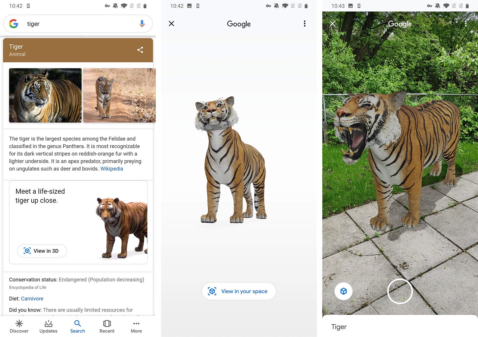 Google's AR animals lets you put a tiger in your living room | Can ...
