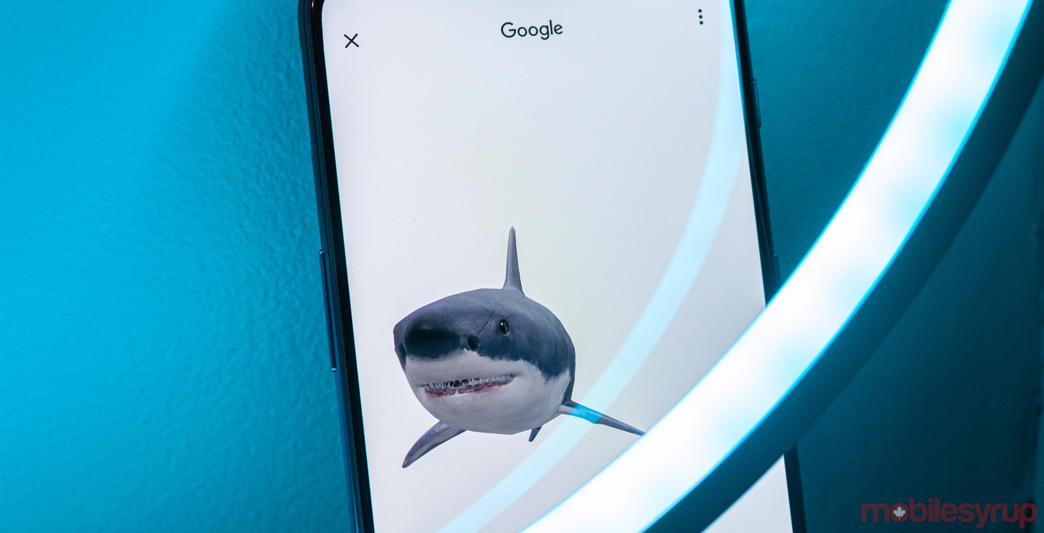 Great white shark Google AR animals