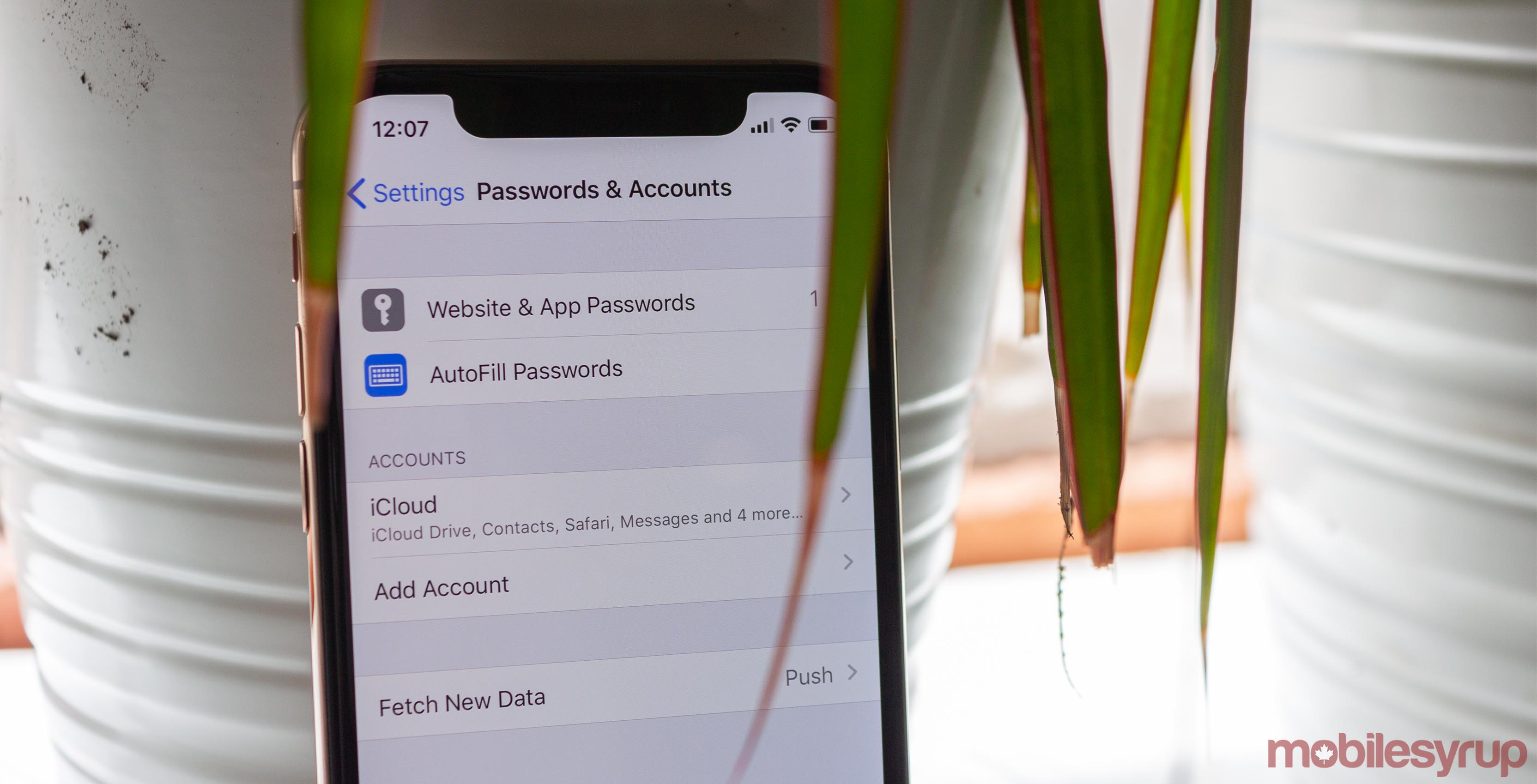 iOS 13 beta bug grants unauthenticated access to saved passwords