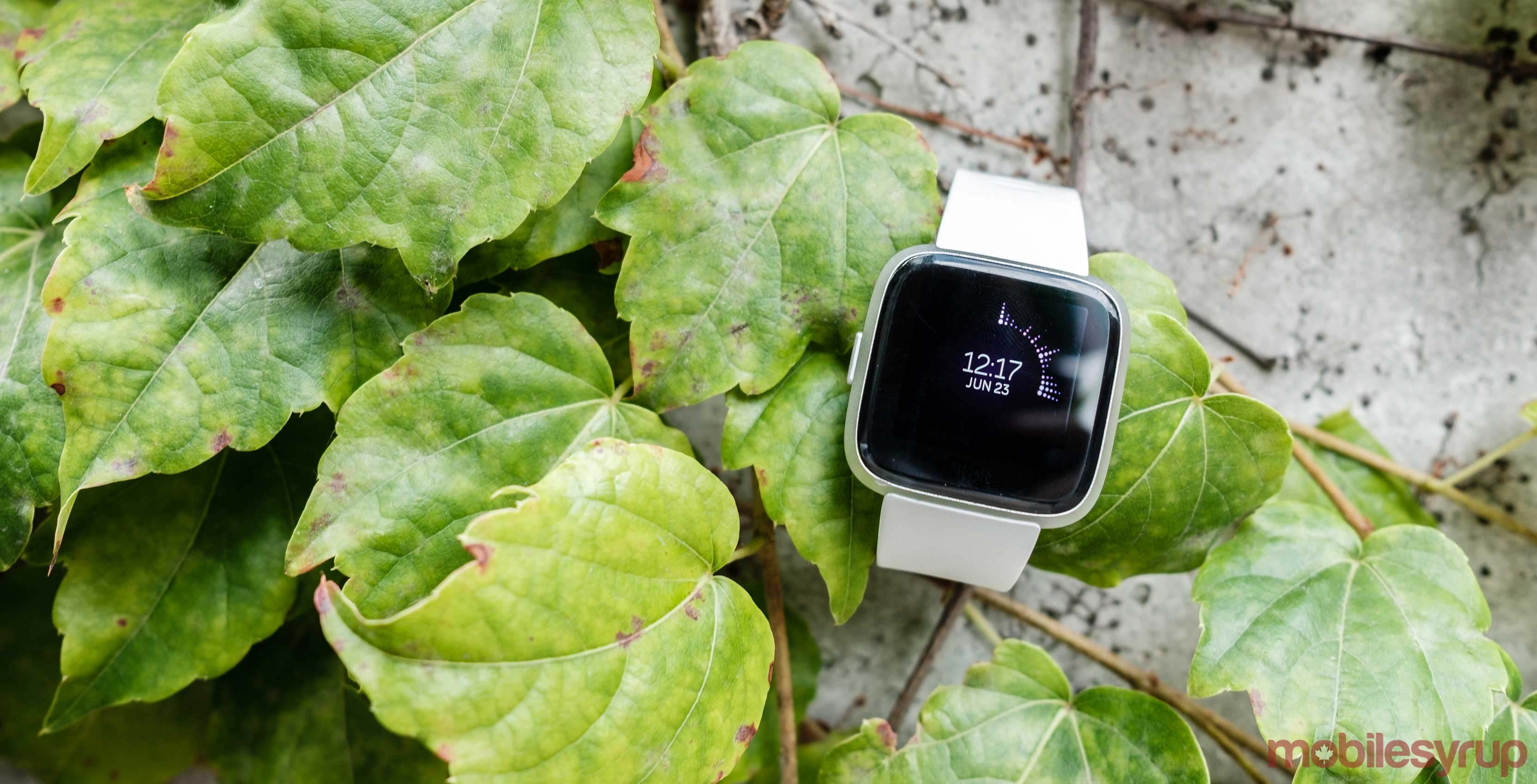 Fitbit Versa Lite Review: Less is more