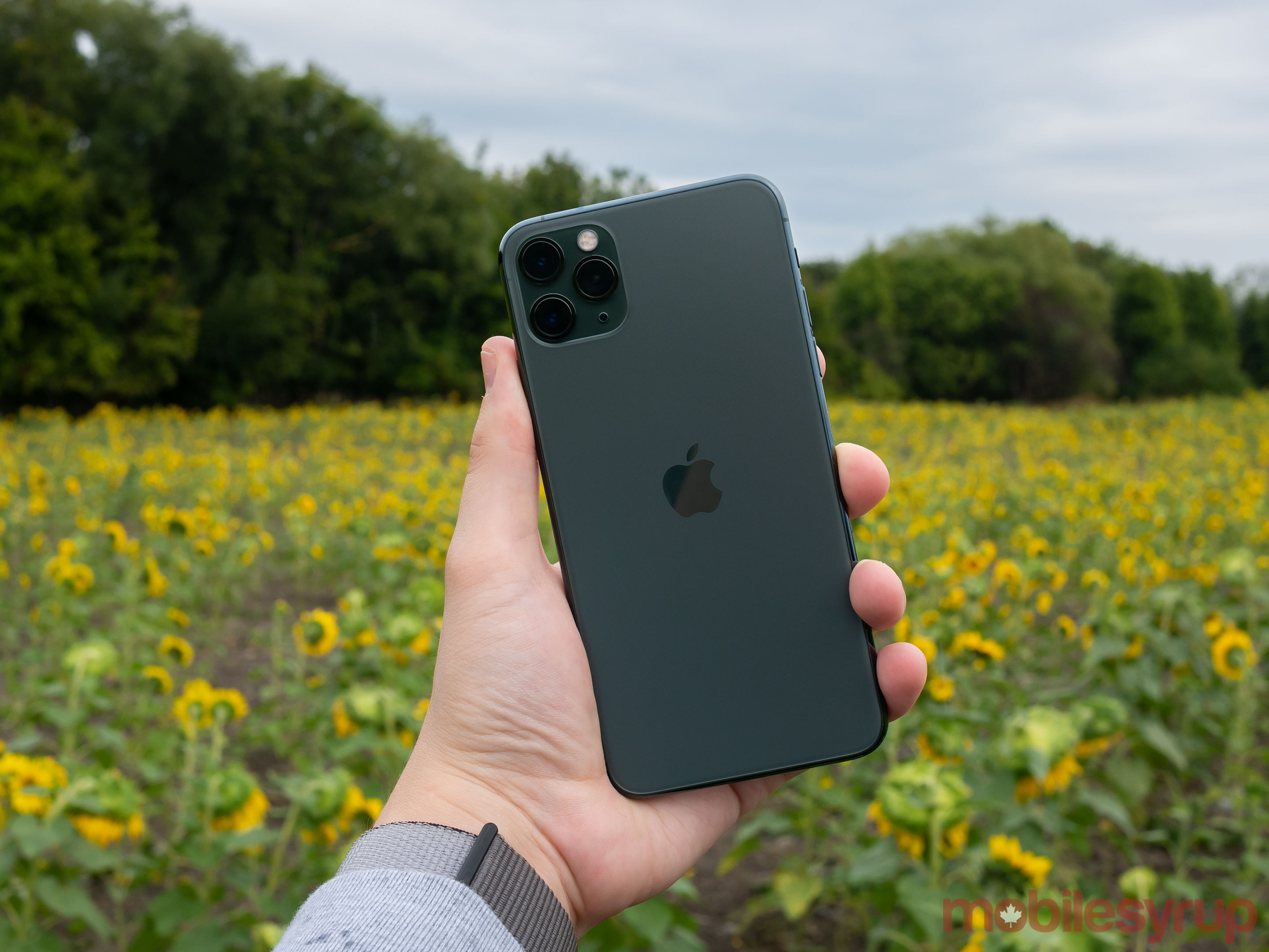 Green iPhone 11 Pro Max