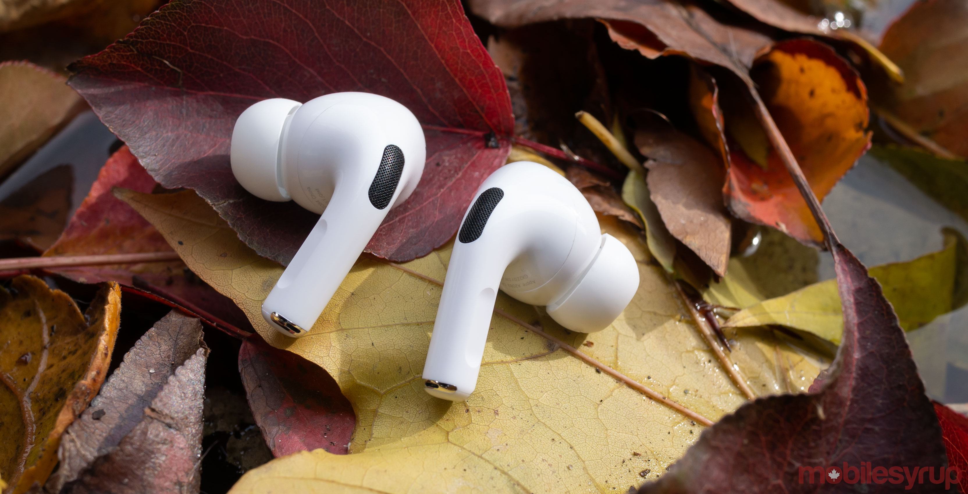 AirPods Pro on leaves