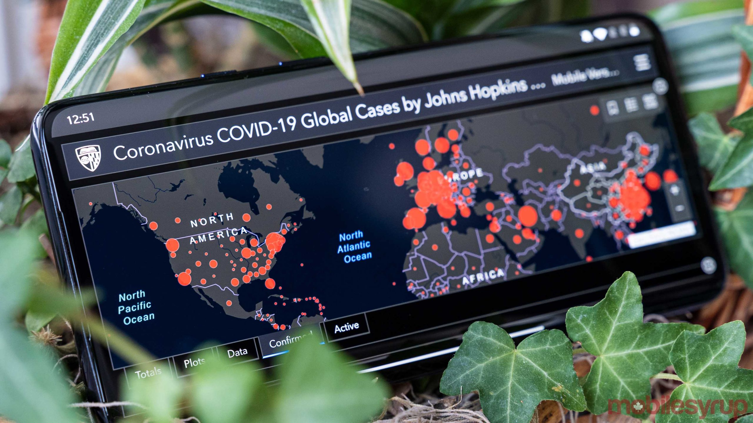 COVID-19 global cases