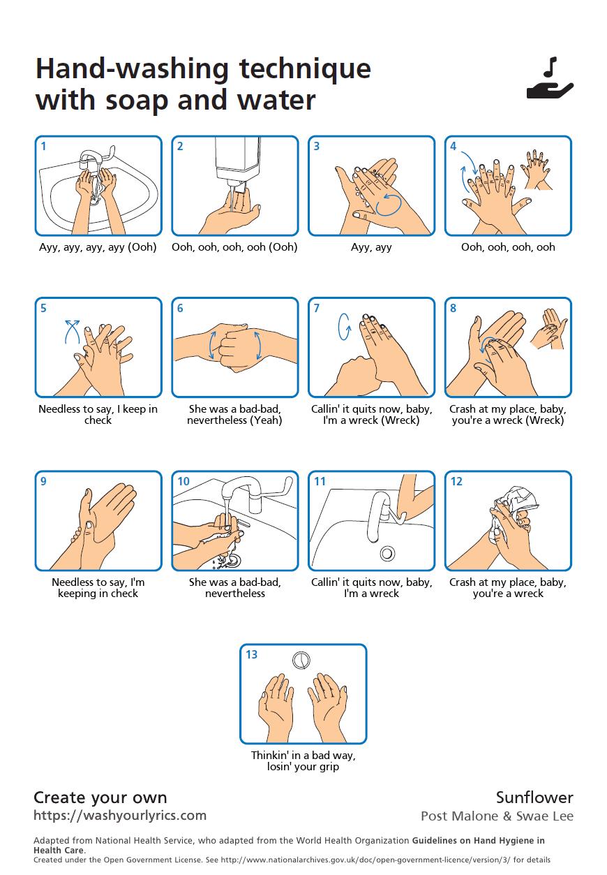 sunflower wash your hands