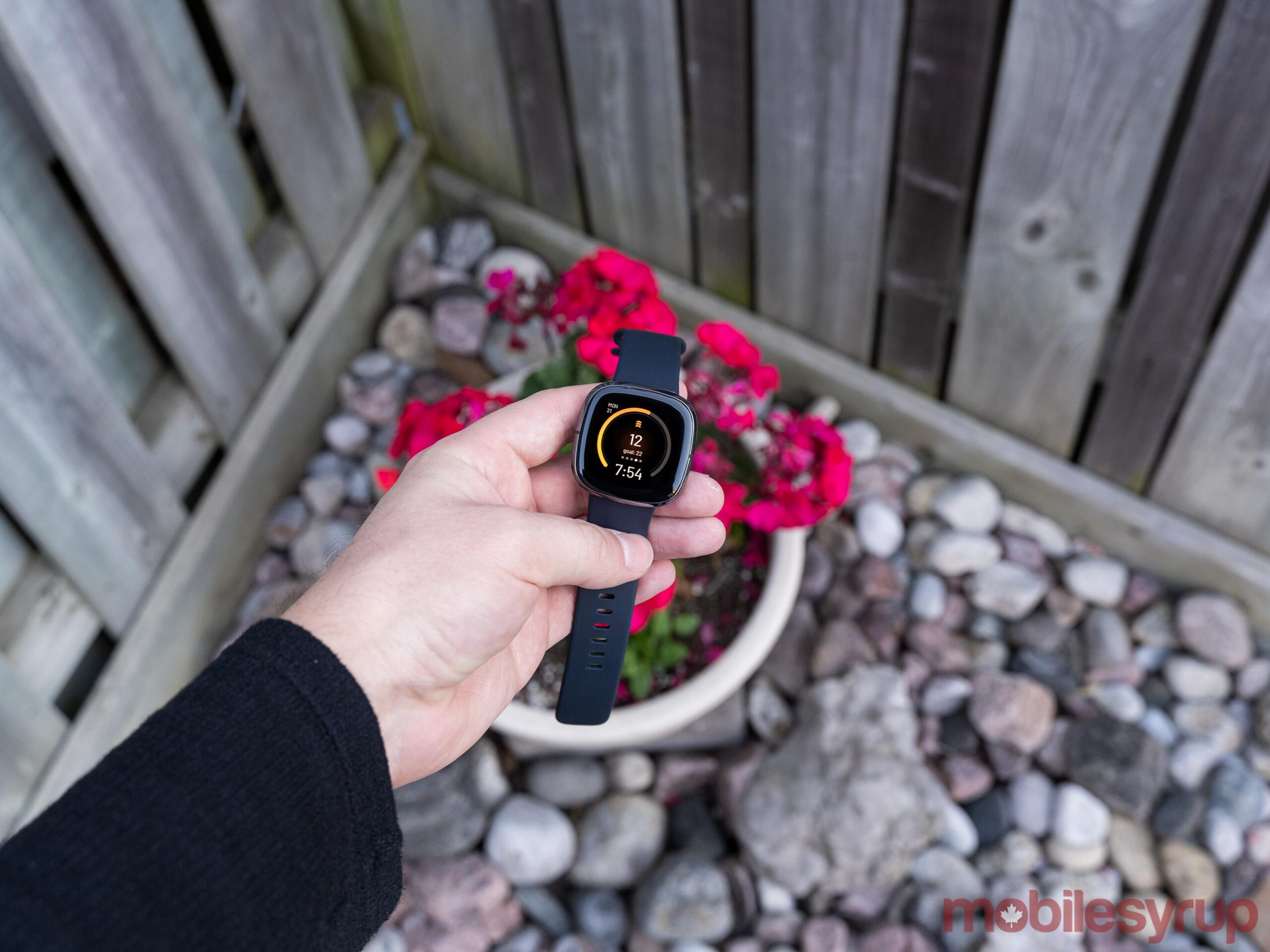 Fitbit Sense Review: Great hardware hindered by frustrating software