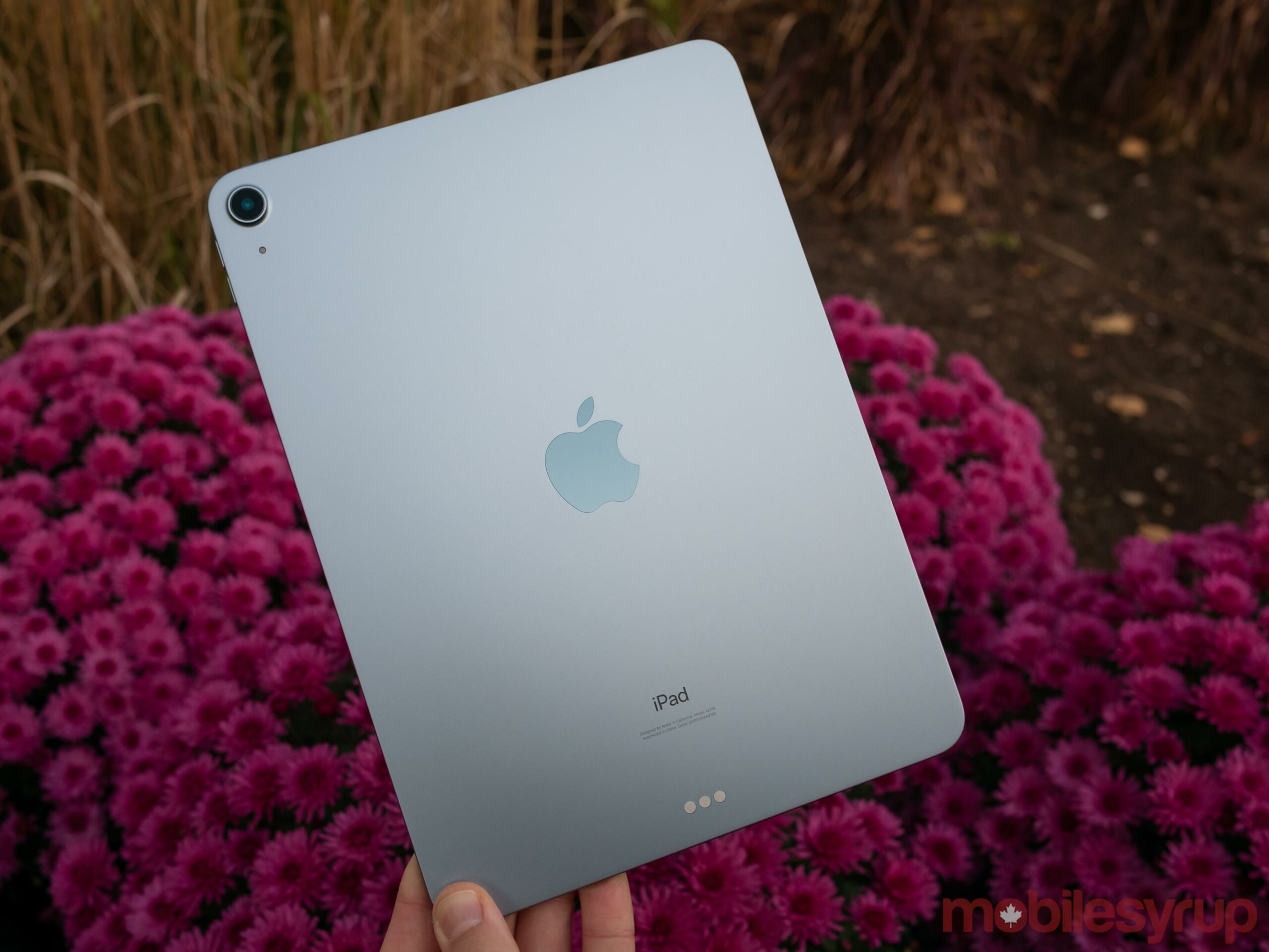 Back of iPad Air