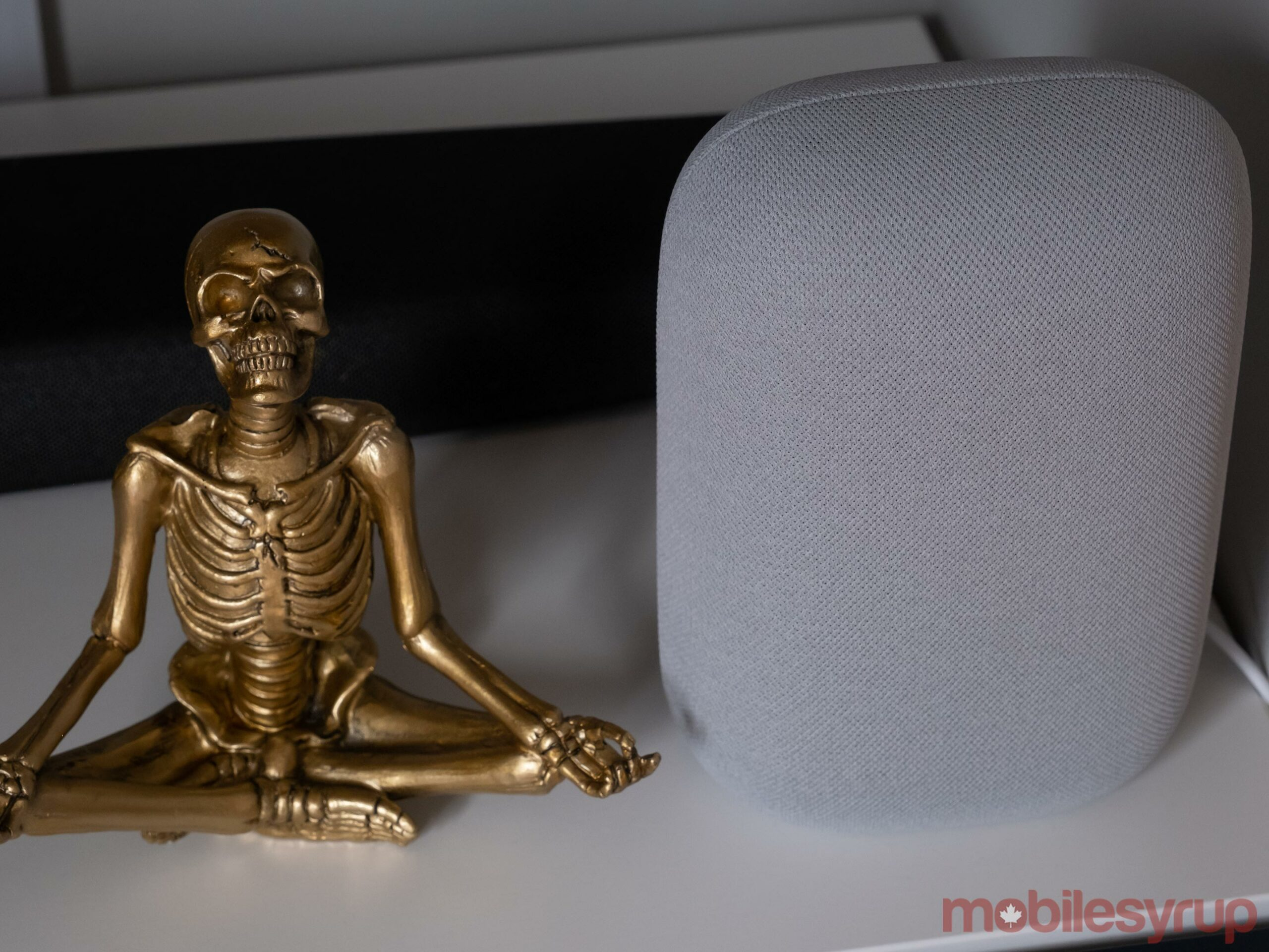 Nest Audio beside a skeleton