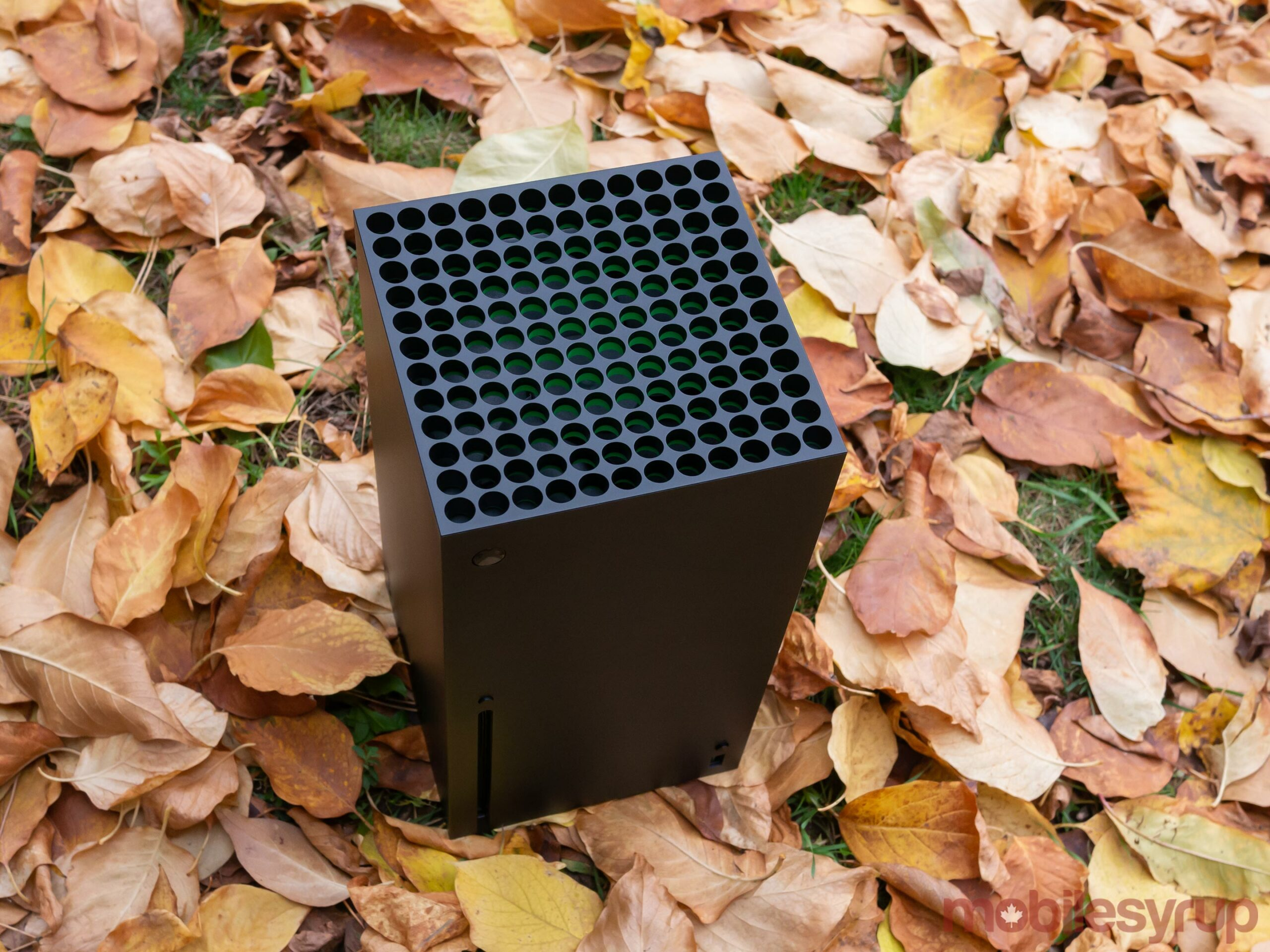 Xbox Series X in leaves