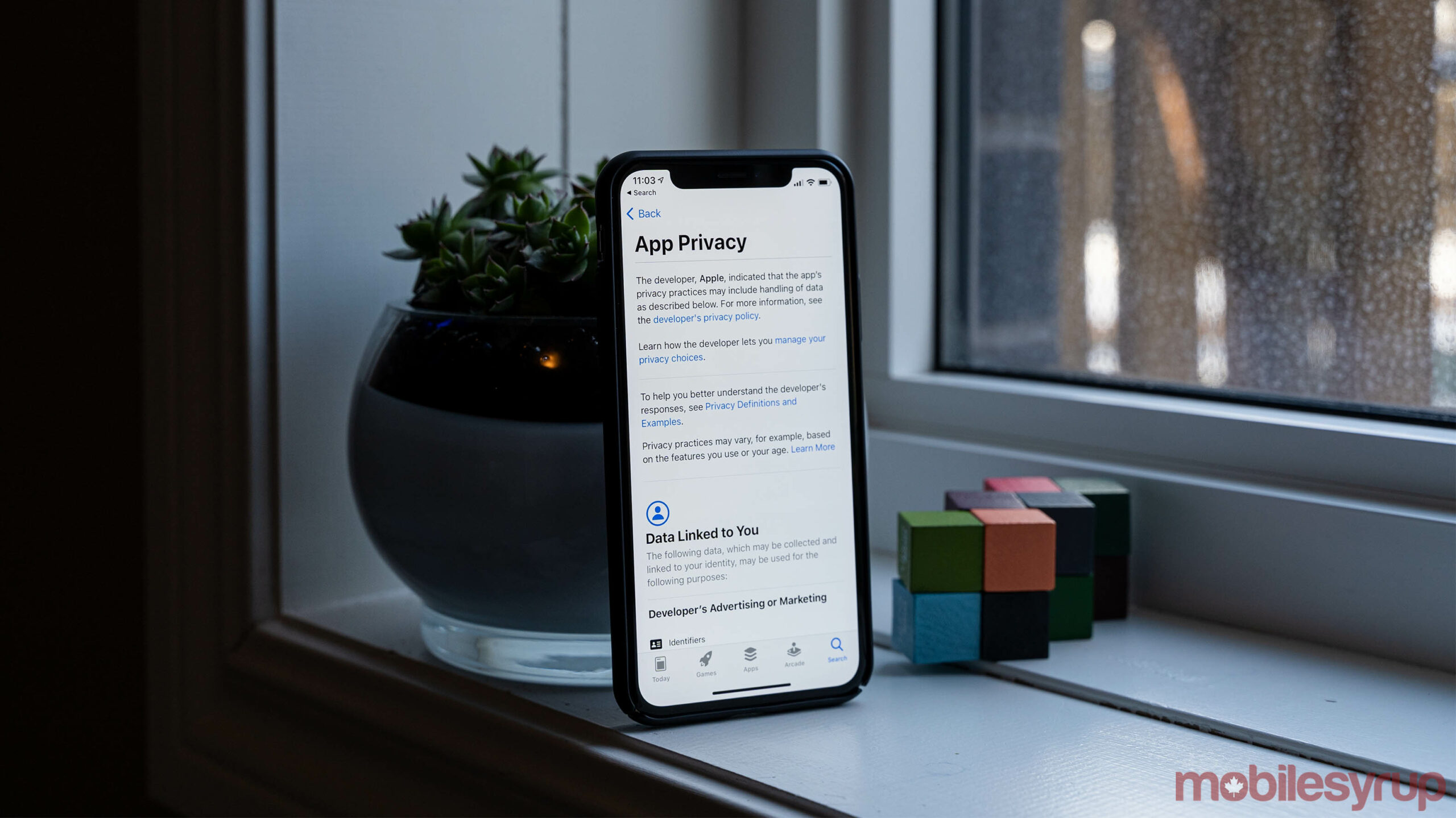 Apple App Store privacy labels