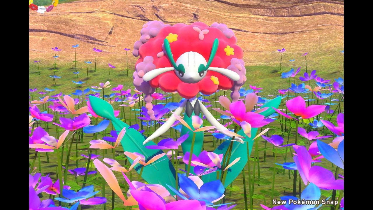 Florges Pokemon Snap