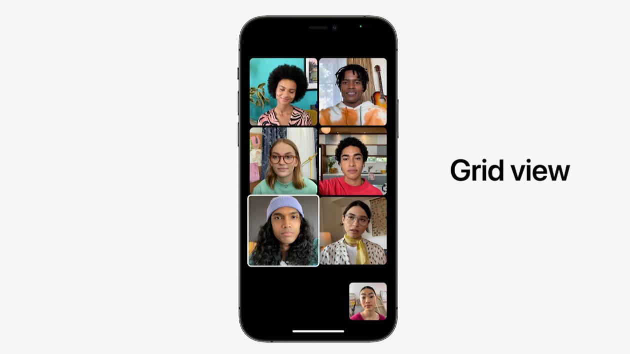 FaceTime Grid View