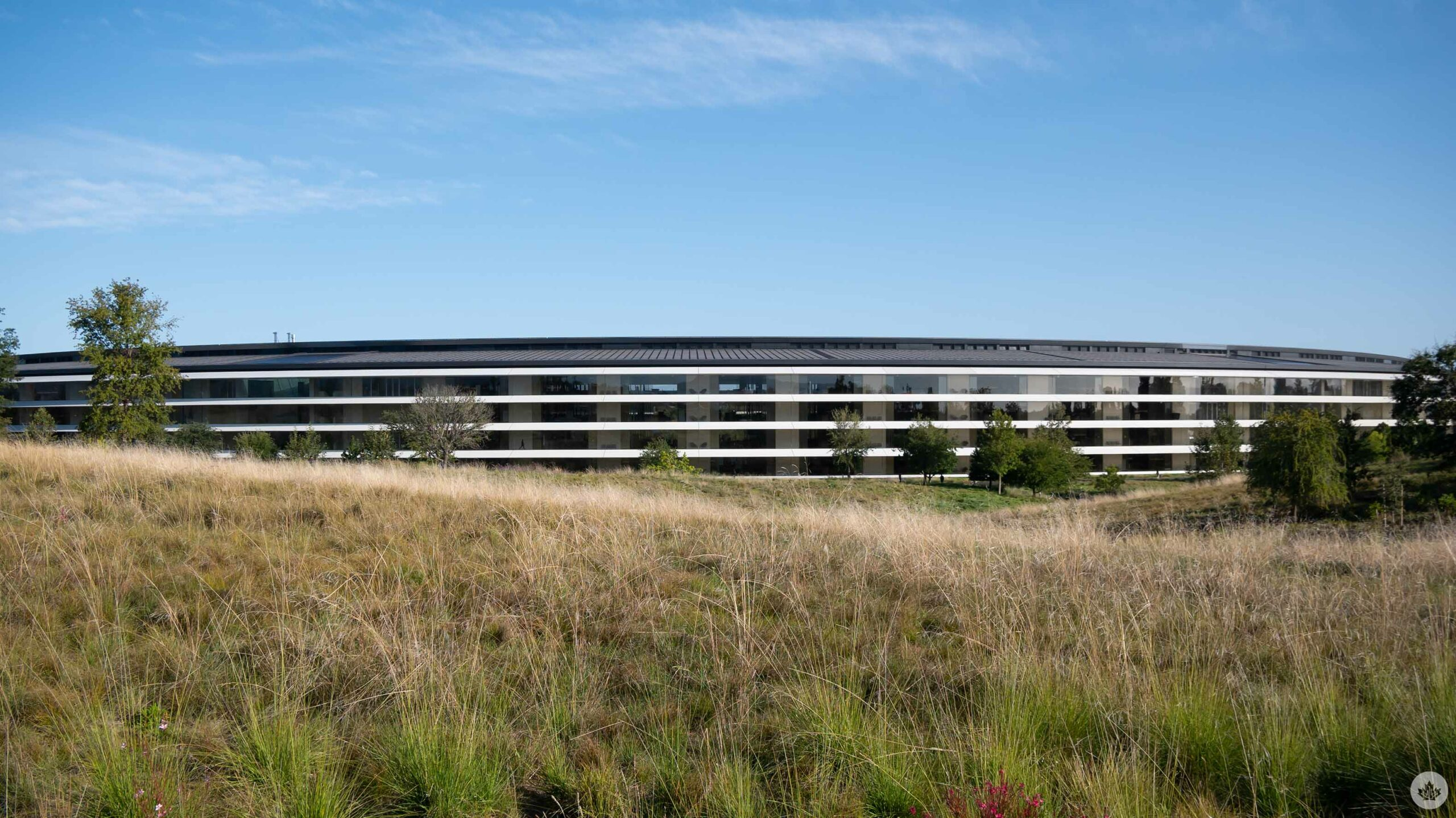 Apple's spaceship office