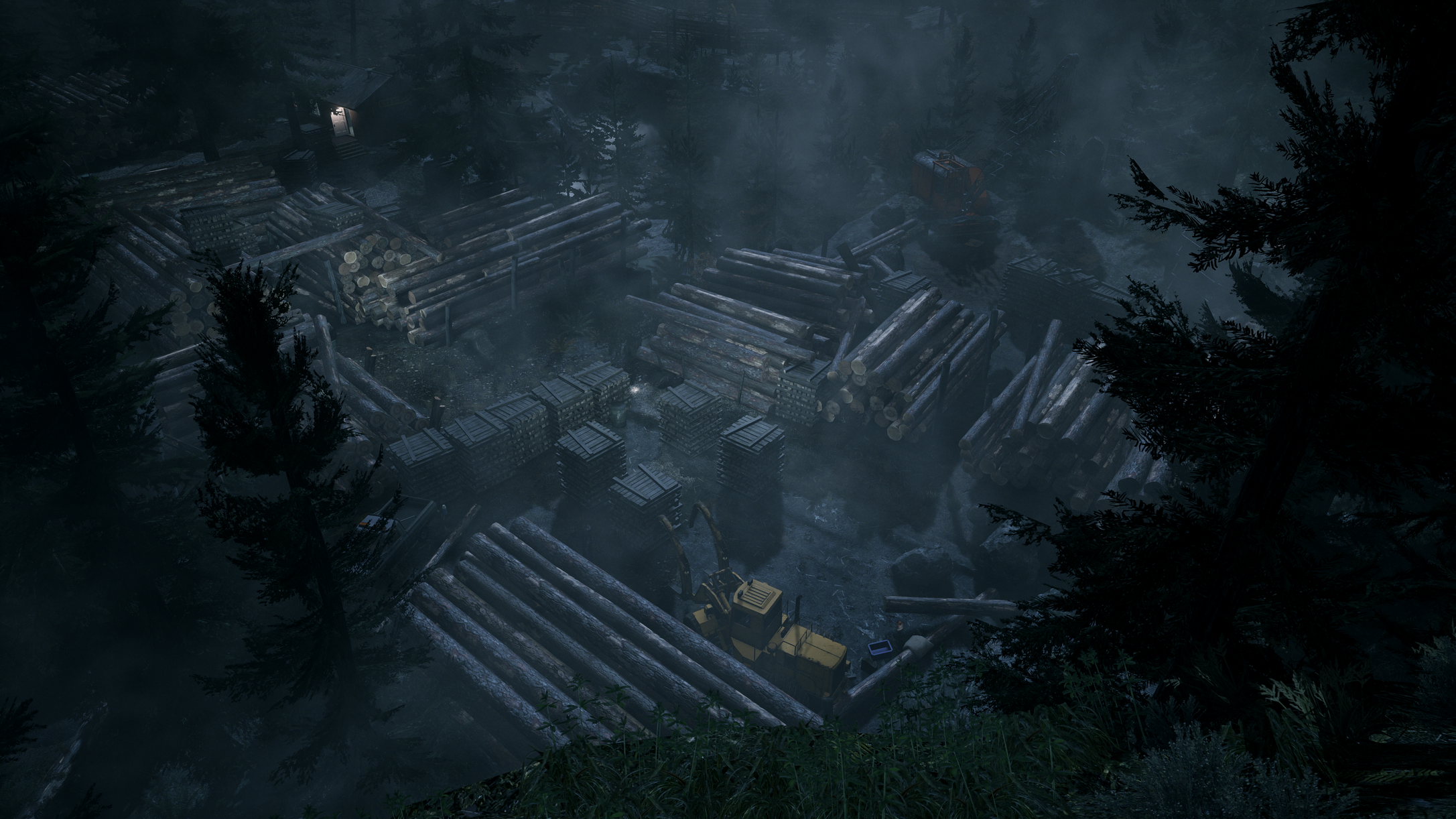 Alan Wake Remastered forest